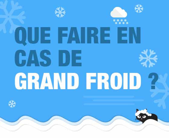Que faire en cas de grand froid